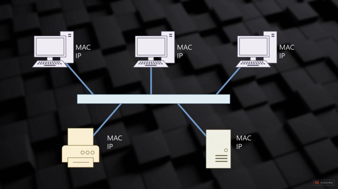 MAC 地址与 IP 地址